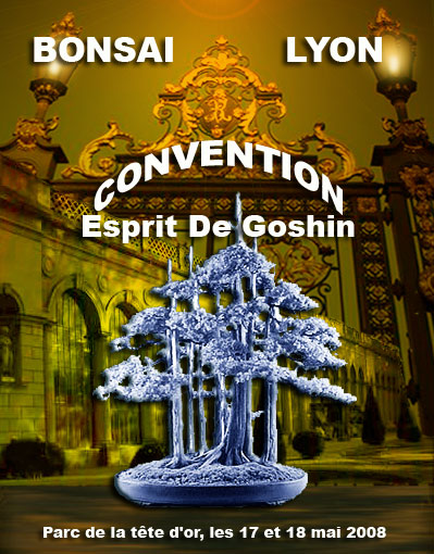 http://www.espritsdegoshin.fr/components/com_agora/img/members/56054_affiche_goshin1.jpg