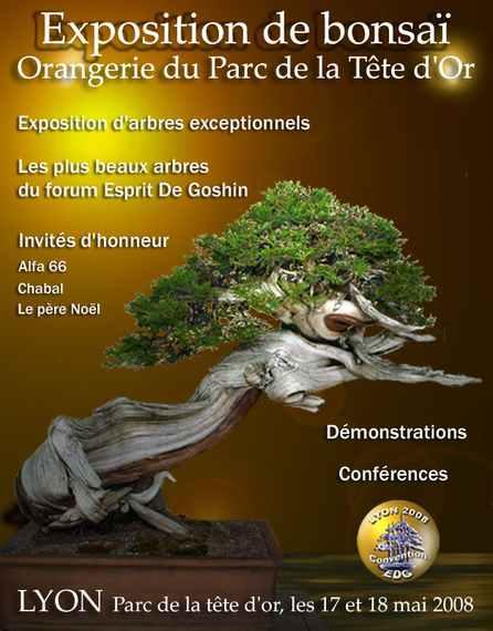 http://www.espritsdegoshin.fr/components/com_agora/img/members/56186_affiche_goshin4.jpg