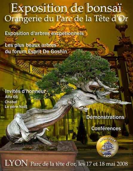 http://www.espritsdegoshin.fr/components/com_agora/img/members/58287_Roberto3.jpg