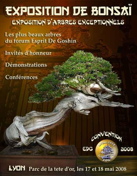 http://www.espritsdegoshin.fr/components/com_agora/img/members/58289_Roberto_5.jpg