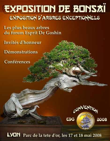 http://www.espritsdegoshin.fr/components/com_agora/img/members/58290_Roberto_6.jpg