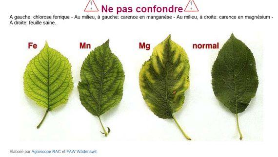 http://www.espritsdegoshin.fr/components/com_agora/img/members/67450_Capture-1.jpg