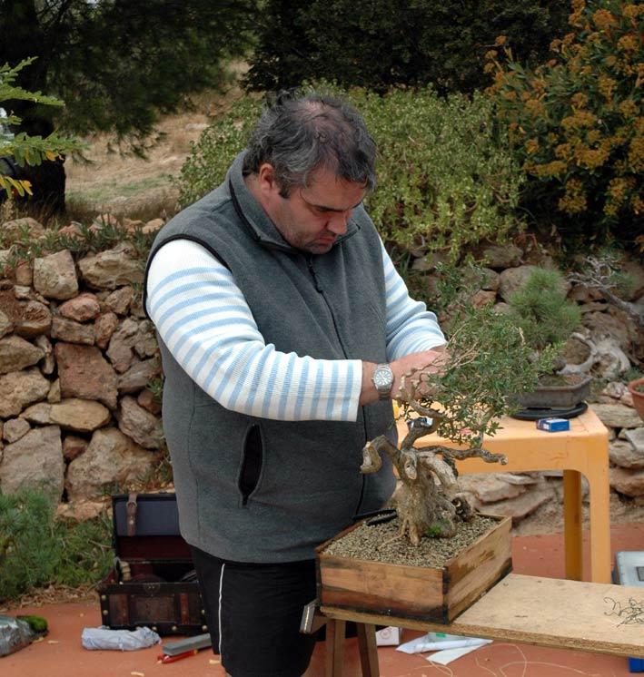 http://www.espritsdegoshin.fr/components/com_agora/img/members/71525_Ligaturage.jpg