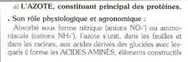 http://www.espritsdegoshin.fr/components/com_agora/img/members/7243_azote1.jpg