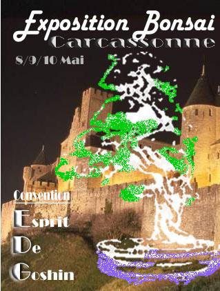 http://www.espritsdegoshin.fr/components/com_agora/img/members/73430_affiche_carcassone.jpg