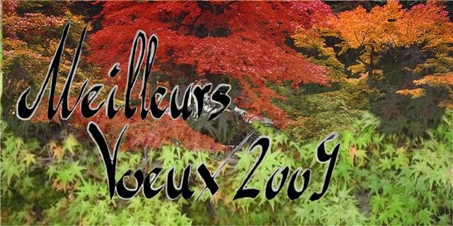 http://www.espritsdegoshin.fr/components/com_agora/img/members/73888_Meilleurs_voeux2009_Small.jpg