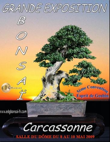 http://www.espritsdegoshin.fr/components/com_agora/img/members/74557_Affiche_Convention_edg2_365pix.jpg
