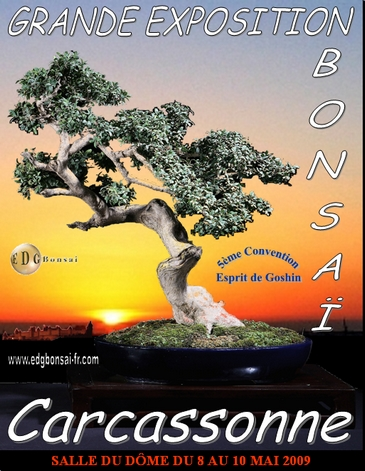 http://www.espritsdegoshin.fr/components/com_agora/img/members/74560_Affiche_Convention_edg5_365pix.jpg