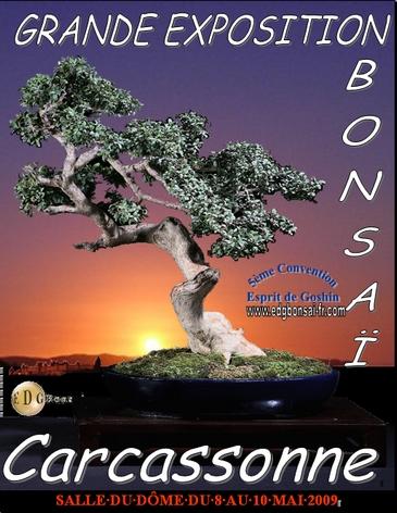 http://www.espritsdegoshin.fr/components/com_agora/img/members/74561_Affiche_Convention_edg6_365pix.jpg