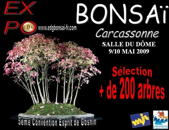 http://www.espritsdegoshin.fr/components/com_agora/img/members/75248_Affiche_Convention_edg10_550_pix.jpg