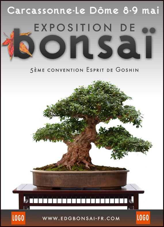 http://www.espritsdegoshin.fr/components/com_agora/img/members/75253_affiche-convention.jpg