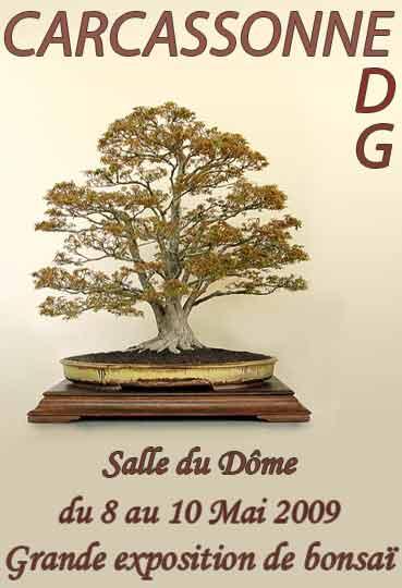 http://www.espritsdegoshin.fr/components/com_agora/img/members/75573_12_Toche.jpg