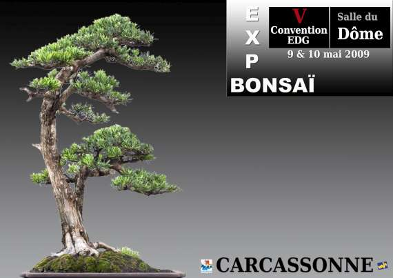 http://www.espritsdegoshin.fr/components/com_agora/img/members/75584_23_Roberto.jpg