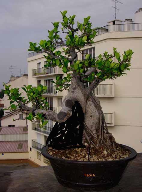 http://www.espritsdegoshin.fr/components/com_agora/img/members/84164_2ea31096dc5508c246e7342f053c426339e03bfd