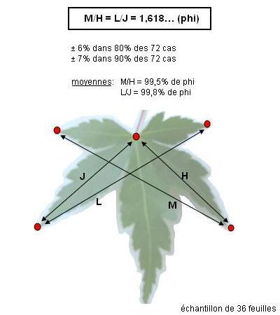 http://www.espritsdegoshin.fr/components/com_agora/img/members/84789_31a3304040af74a5765523be5341156e9ab12187