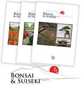 Bonsai & Suiseki magazine